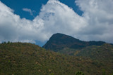 Yercaud 1 by jpk40, Photography->Landscape gallery