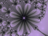 My Flower by plgBoo, Abstract->Fractal gallery