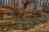Hathaway Preserve 2nd version by tigger3, photography->landscape gallery