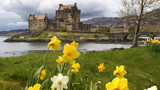 eilean donan castle with flowers by jeenie11, Photography->Castles/Ruins gallery