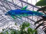 Another Look at a Recycled Porpoise by Pistos, photography->sculpture gallery