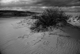 dunescape by solita17, Photography->Landscape gallery