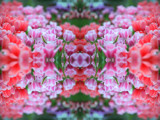 Spring Teaser #5 by HylianPrincess1985, Abstract->Fractal gallery