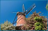 Traditional Windmill 'De Koornbloem' by corngrowth, photography->mills gallery