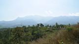 Wayanad Views - 2 by prashanth, Photography->Landscape gallery