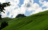 Hillside by boremachine, Photography->Landscape gallery
