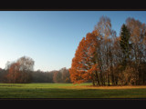 November flavour by ekowalska, photography->landscape gallery