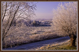 Winter In Zeeland 2009 (24) by corngrowth, Photography->Landscape gallery