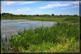 Ottawa National Wildlife Refuge 3 by Jimbobedsel, Photography->Landscape gallery