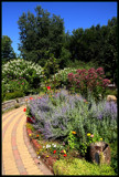Defries Gardens_#3 by tigger3, photography->gardens gallery