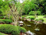 An Australian Japanese Garden by Thunderfoot, photography->gardens gallery