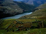 Douro river by piupiu, Photography->Landscape gallery