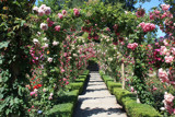 Butchart Archway by Con_, Photography->Gardens gallery