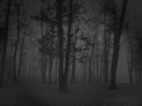 Eolic by stuffnstuff, photography->landscape gallery