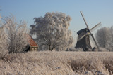 Winter in Holland (IV) by Paul_Gerritsen, Photography->mills gallery