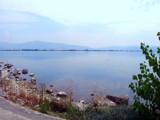 Summer, Hot... by koca, photography->shorelines gallery