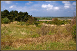 In The Dunes 4 by corngrowth, photography->landscape gallery