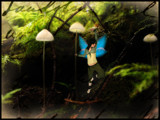 fairy tale by enon, Photography->Manipulation gallery