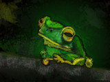 A Pensive Frog by DigitalFX, Contests->Draw a Frog gallery