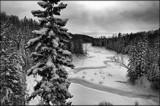 """Walking In A Winter Wonderland #2 - B/W"" by icedancer, contests->b/w challenge gallery"