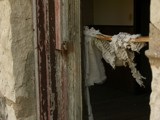 Tattered Curtain in the Wind by fishmoe, Photography->Architecture gallery