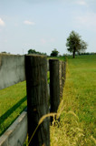 Kentucky Fence by jmtmn10, Photography->Landscape gallery