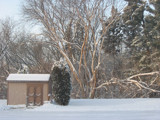 Snowy Wisconsin Morning by SilentlyHoldingOn, Photography->Landscape gallery