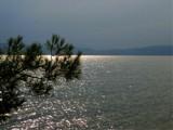 Pretending by koca, photography->landscape gallery