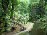 Tropical garden by ppigeon, Photography->Gardens gallery