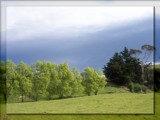Spring Green by LynEve, Photography->Landscape gallery