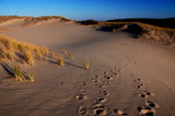 sunday and sand dunes by solita17, Photography->Landscape gallery