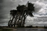 Against The Wind by LynEve, Photography->Landscape gallery