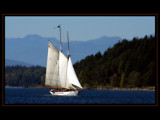 Under Sail by photoimagery, Photography->Boats gallery