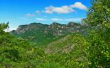 Jungle in France by LeBlaze, Photography->Landscape gallery