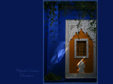 ...the gardens of Majorelle by fogz, Photography->Landscape gallery