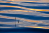 zen koan by solita17, Photography->Water gallery