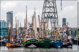 Maritime Festival 3 by corngrowth, photography->boats gallery