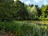 A Walk Round Wallington by biffobear, photography->landscape gallery