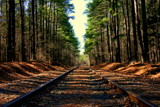 Spring tracks by abpura, photography->trains/trams gallery