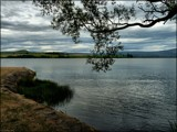 Lake Waihola (Spreading Waters) by LynEve, photography->landscape gallery