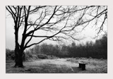 a cowd bench for owd bob by JQ, Photography->Landscape gallery