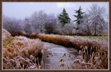 Winter In Zeeland 2009 (21) by corngrowth, Photography->Landscape gallery