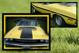 Dodge Challenger by LynEve, photography->cars gallery