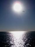 Santa Monica Sun by Pfaff, Photography->Landscape gallery