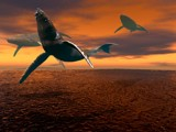 If Whales Could Fly by pixelpusher, abstract->Surrealism gallery