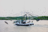 Louisiana Shrimpboat by Vivianne, Photography->Boats gallery