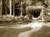 Grandmas Garden Trellis by graffitigirl21, photography->landscape gallery
