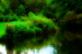 Reflections of Summer  by tigger3, photography->water gallery