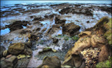 Treasure on the shore by LynEve, photography->shorelines gallery