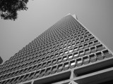Tranamerica Pyramid by neilsaunders, photography->architecture gallery